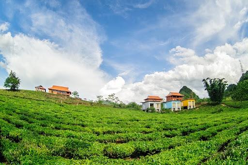 Danh sách Khách sạn - Nhà nghỉ tại Mộc Châu